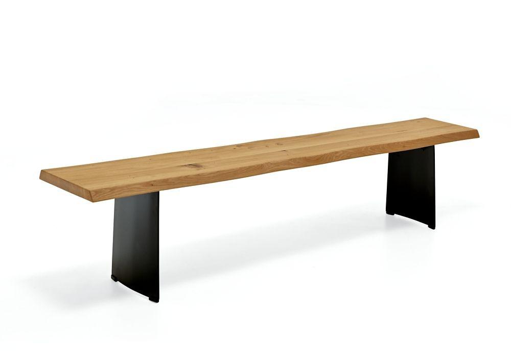 Design Sitzbank TREE-TOP (schwarzes Gestell)